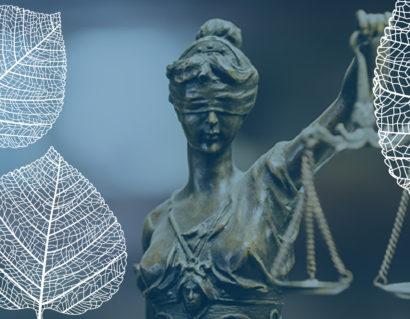 Справедливість, закон і суспільство
