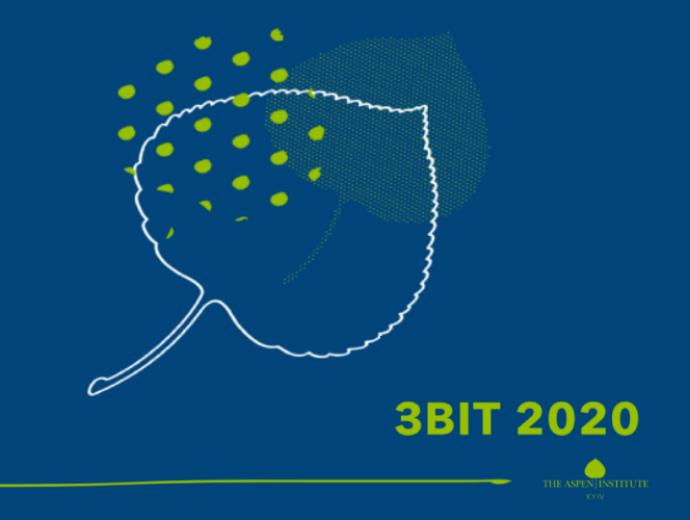 Аспен Інститут Київ презентує Річний звіт 2020